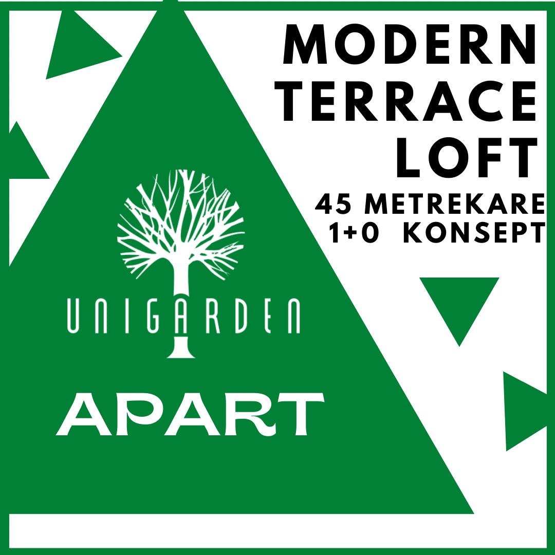Modern Terrace Loft Apart